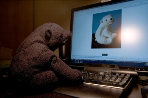 """Online Dating for Bears"" by joeywan is licensed under CC BY 2.0."